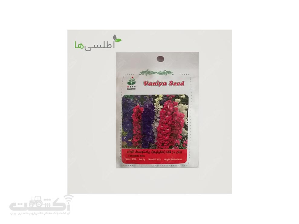 فروش بذر گل زبان در قفا