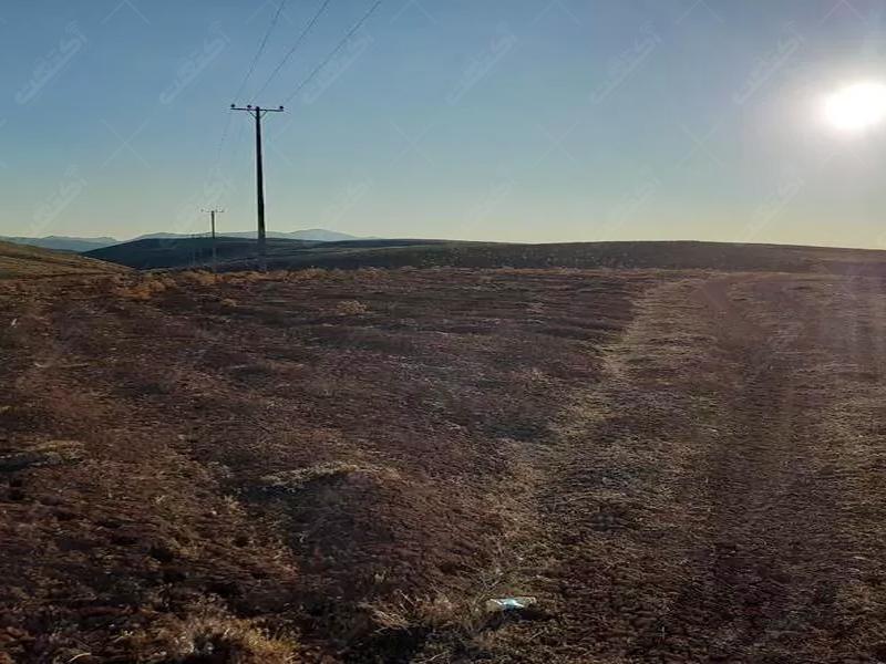 زمین کشاورزی هکتاری