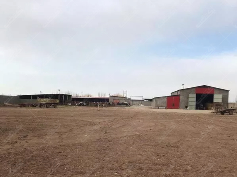 ۱۱۰هکتار زمین کشاورزی و گاوداری شیری صنعتی
