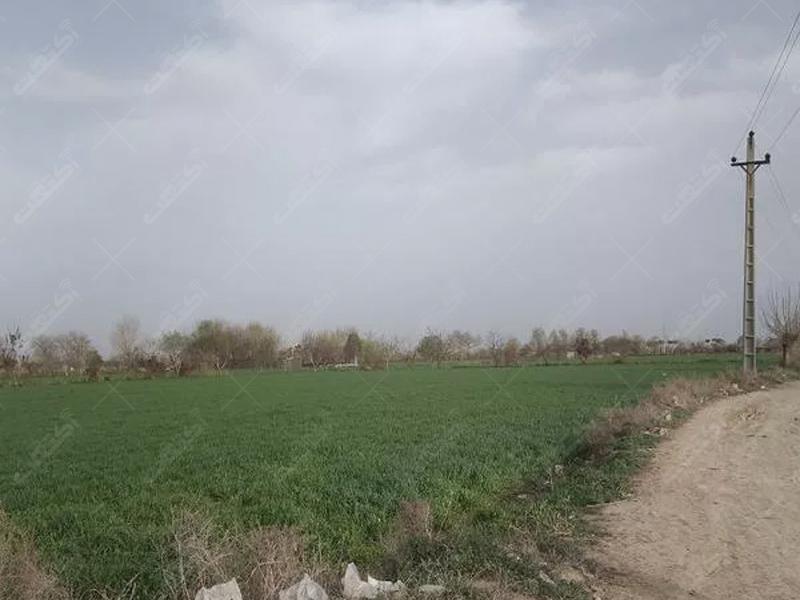 زمین کشاورزی به متراژ ۷۱۵۰