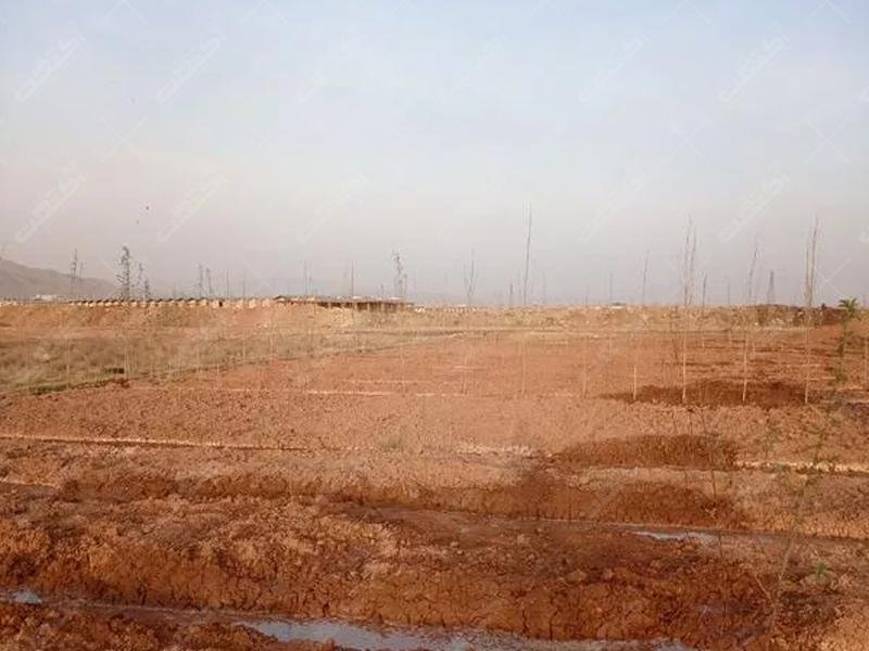 زمین کشاورزی مناسب برای باغچه
