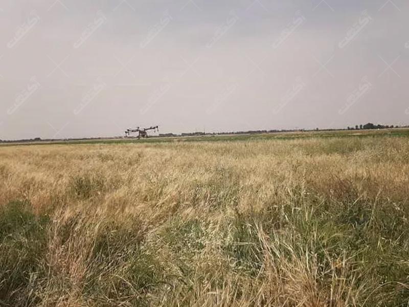 سمپاشی زمین وباغات کشاورزی