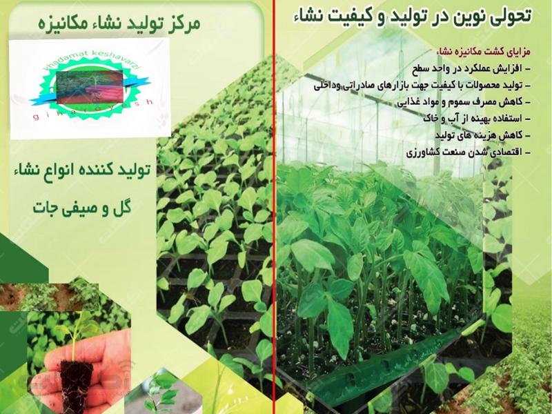 مرکز خدمات کشاورزی گیاه رویش