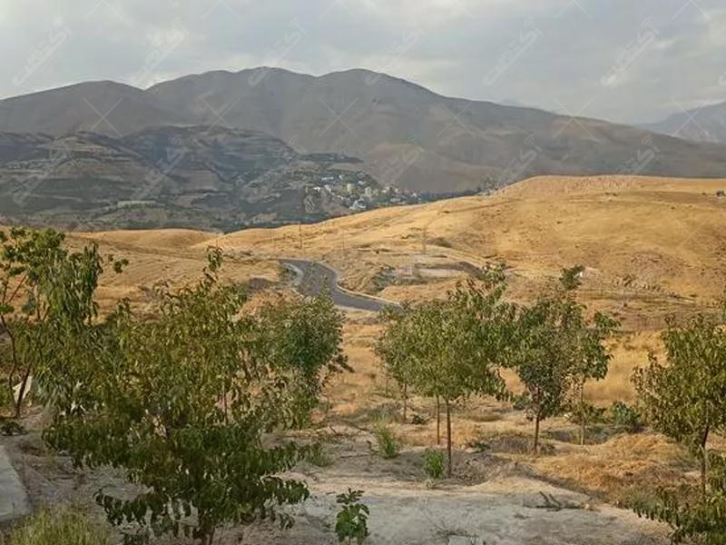 زمین با کاربری کشاورزی دارای سند تک برگ مشاعی