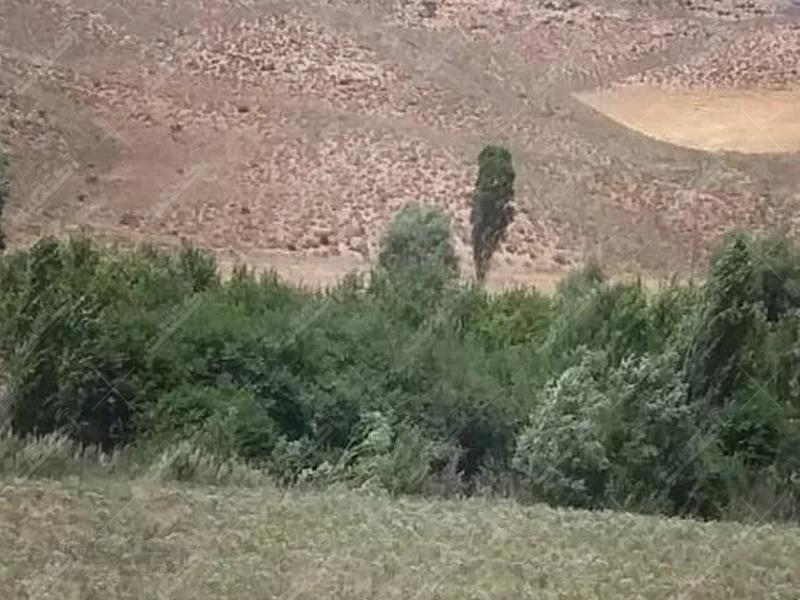زمین در فیروزکوه جاده ارجمند ۵۰۰۰متر