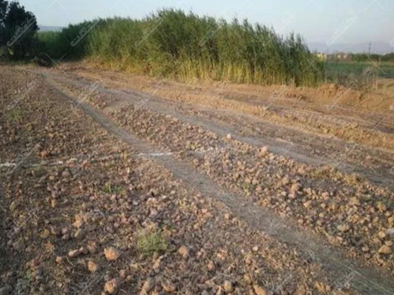 زمین کشاورزی مناسب باغچه و ...