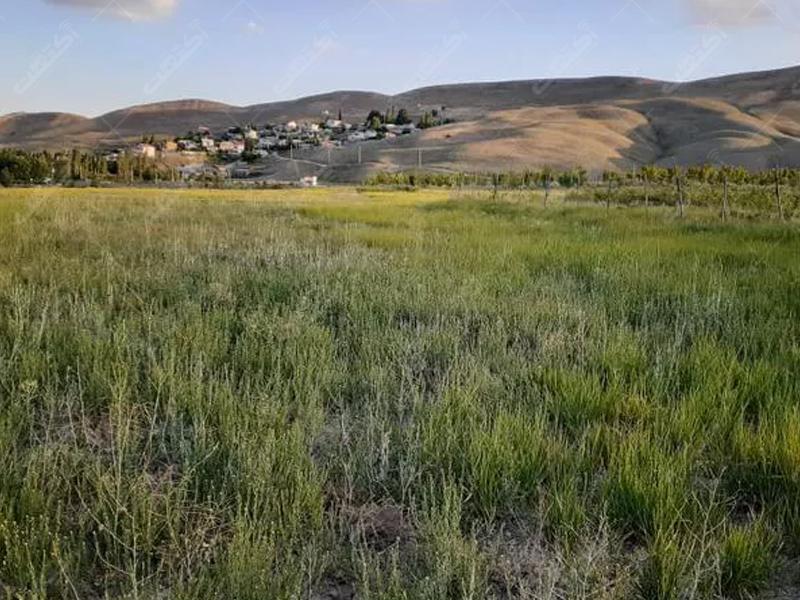 زمین کشاورزی، 2427 متر، فیروزکوه، روستای طارس