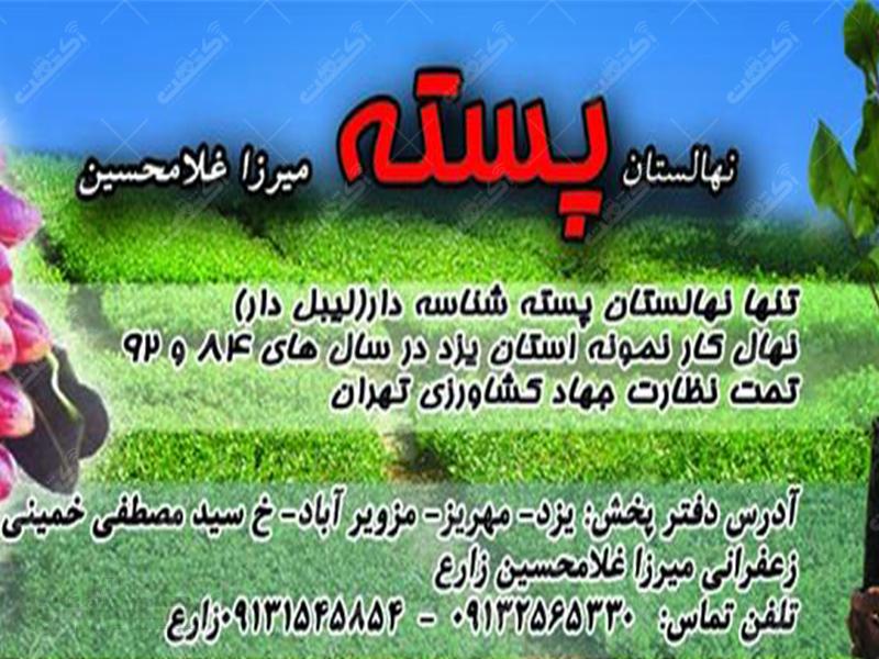 نهالستان میرزا غلامحسین