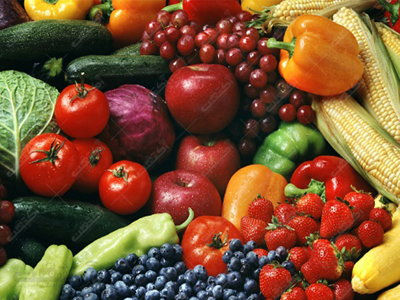 شرکت کشاورزی کاربخش