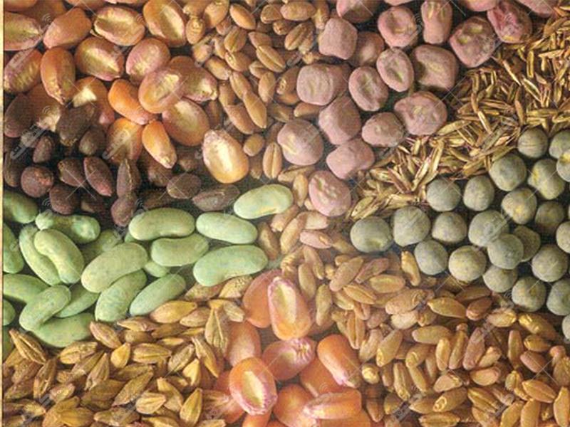 فروشگاه کشاورزی محمدزاده
