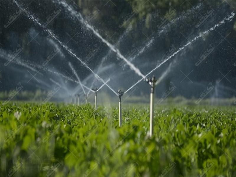 شرکت زمرد سبز بروجرد