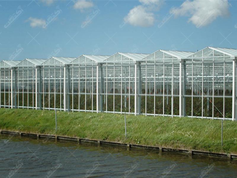 شرکت آسیا شفا گیاه