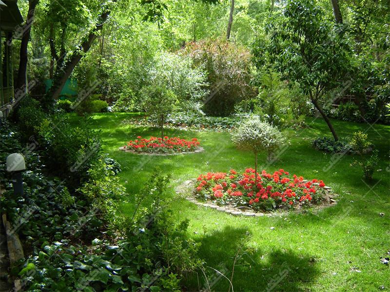 شرکت مزرعه گلها