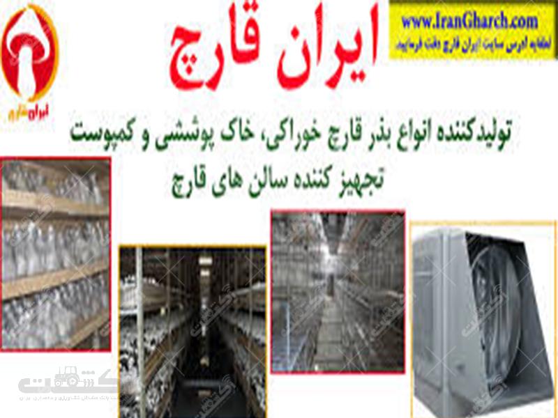 شرکت ایران قارچ