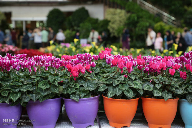 شرکت تعاونی تولیدکنندگان گل و گیاه شمال نوشهر