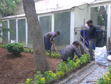 انجام خدمات باغبانی