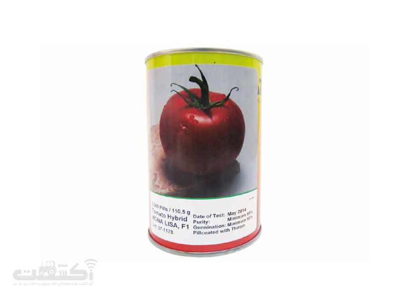 بذر گوجه فرنگی هیبرید