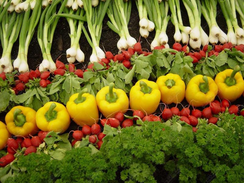 صادرات سبزیجات و صیفی جات تازه