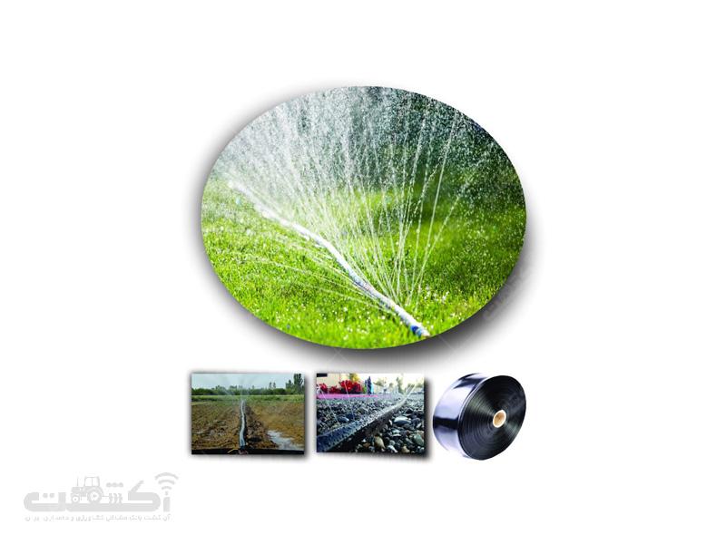 لوله بارانی (آسافلکس)