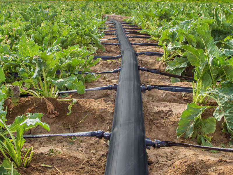 تولید لوله های پلی اتیلن تاشو آبیاری