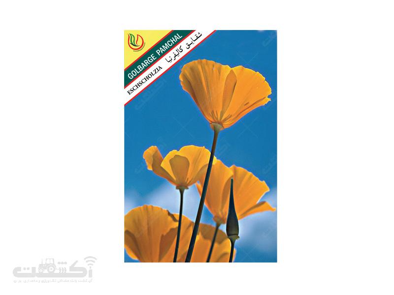 تولید و فروش بذر گل زینتی شقایق کالیفرنیایی