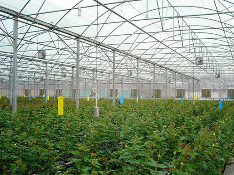 تولید سایه بان داخلی گلخانه ها