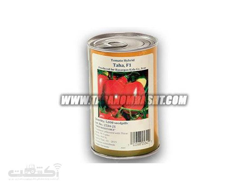 فروش بذر گوجه فرنگی هیبرید فضای باز طاها